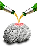 Effect of alcohol on the brain, conceptual image