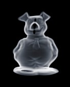 Piggy bank, X-ray