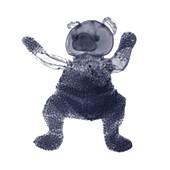 Beanie teddy bear, X-ray