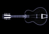 Eight string guitar, X-ray