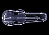 Violin in a case, X-ray