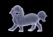 Statue of a dog, X-ray