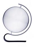Globe, X-ray