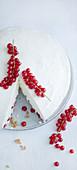 Panna cotta cake with berries