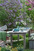 Flieder Tischdekoration im Garten