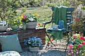 Kleine Kiesterrasse im Garten,Gefäße mit Hornveilchen, Wildtulpen, Tulpen Traubenhyazinthen, Primeln, Ranunkeln, Vergißmeinnicht, Stuhl mit Decke, Tassen, Krug und Gläsern