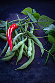 Green runner beans and red chilli peppers