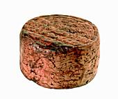 Brillo di Treviso (red-wine cheese, Italy)