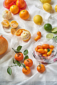 Various citrus fruit - lemon, lime, kumquat, pomelo, mandarine and orange