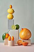 Stillleben mit verschiedenen Zitrusfrüchten