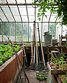 Raised bed in greenhouse
