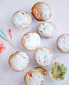Rhubarb and vanilla muffins with icing sugar