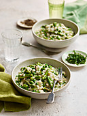 Risotto with green vegetable