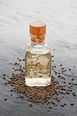 Caraway oil and caraway seeds