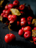 Red crab apples as autumn decorations