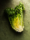 Half romaine lettuce