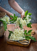 Woman holding elder flower
