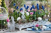 Traubenhyazinthen und Tausendschön mit Osterhasen und Ostereiern als Osterdeko auf Metall-Tablett, kleines Sträußchen in Ei als Vase