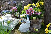 Korb mit Primeln, Tausendschön, Hornveilchen und Traubenhyazinthen mit Osterhase und Ostereiern im Garten