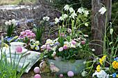 Schale mit weißen Schachbrettblumen, Tausendschön, Hornveilchen, Traubenhyazinthen und Thymian im Garten, Ostereier und Osterküken als Deko