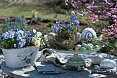 Etagere mit Strahlenanemone und Ostereiern als Tischdeko und Osternest, Jardiniere mit Hornveilchen und Vergißmeinnicht
