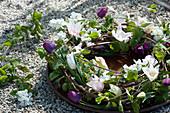 Kranz mit Tulpen, Radspiere, Ranken und Zweigen auf Untersetzer mit Wasser