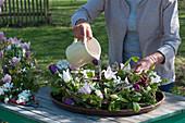 Kranz mit Tulpen, Radspiere, Ranken und Zweigen, Frau gießt Wasser in den Untersetzer