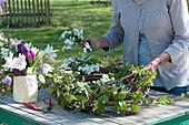 Frau steckt blühende Zweige der Radspiere in den Kranz aus Ranken und Zweigen, Krug mit Tulpen