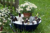 Bierflaschen und Krügen in Schüssel mit Eiswürfeln, Topf mit Margerite als Deko