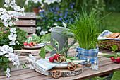 Gedeckter Tisch für die bayrische Brotzeit: Teller mit Radieschen und Brezeln auf Holzscheiben, Topf mit Schnittlauch und Bierkrug