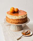 Cheesecake with salted caramel and apricots