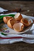 Egg shells after baking
