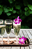 Glass flutes of prosecco outside, with purple orchids, and greenery behind