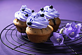 Vegan blueberry cupcakes with blueberry cream topping
