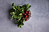 Fresh radishes in a bowl on a gray background