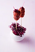 Octopus and juniper fritters with raspberry mustard