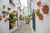 Barrio de la Villa, old town alley, Priego de Cordoba, Cordoba, Andalusia, Spain