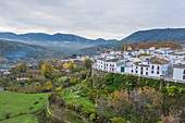Priego de Cordoba surrounded by olive groves, Cordoba, Andalusia, Spain