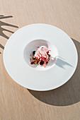 ice cream made from goat's milk yoghurt and raspberries