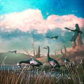Conflicto prehistoric birds, illustration