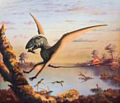 Dimorphodon pterosaur with prey, illustration
