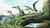 Hornby azhdarchoid pterosaurs, illustration