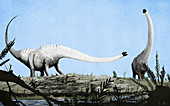 Mamenchisaurus dinosaurs, illustration