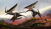 Thalassodromeus pterosaurs hunting, illustration