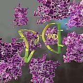 Molecular logic gate, conceptual illustration