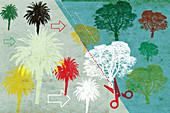 Pressure on forest from palm oil, illustration
