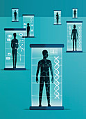 Different people inside genetic scanners, illustration