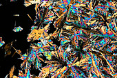 Mixture of crystals, polarised light micrograph