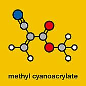 Methyl cyanoacrylate molecule, illustration
