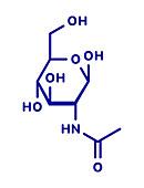 N-Acetylglucosamine food supplement molecule, illustration